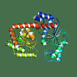 Molmil generated image of 2xa1