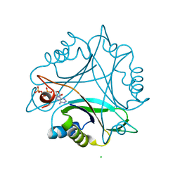 Molmil generated image of 2xbp