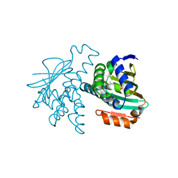 Molmil generated image of 2xdl