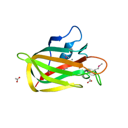Molmil generated image of 2xqx