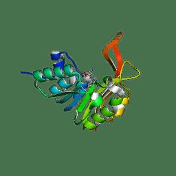 Molmil generated image of 2xva