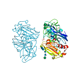 Molmil generated image of 2xyb