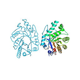 Molmil generated image of 2xyl