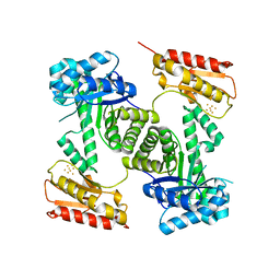 Molmil generated image of 2y0f