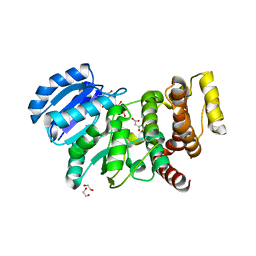 Molmil generated image of 2y4l