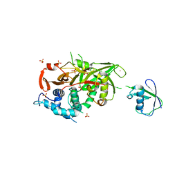Molmil generated image of 2y5b