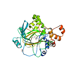 Molmil generated image of 2ybp