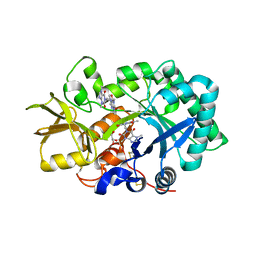 Molmil generated image of 2ybt