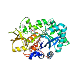 Molmil generated image of 2ybu