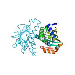 Molmil generated image of 2ye2
