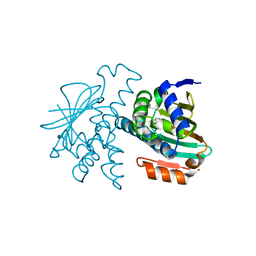 Molmil generated image of 2ye6