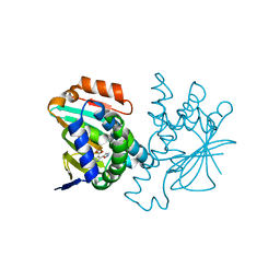 Molmil generated image of 2ye8