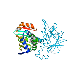Molmil generated image of 2ye9