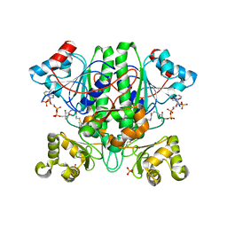 Molmil generated image of 2yim