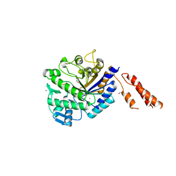 Molmil generated image of 2yl5