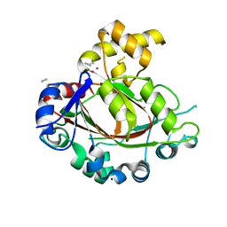 Molmil generated image of 2ypd