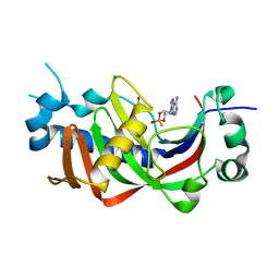 Molmil generated image of 2yph