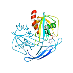 Molmil generated image of 2yvo