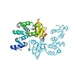Molmil generated image of 2yvy