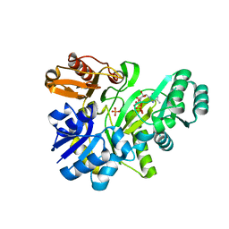 Molmil generated image of 2yw2