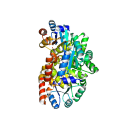 Molmil generated image of 2yw3