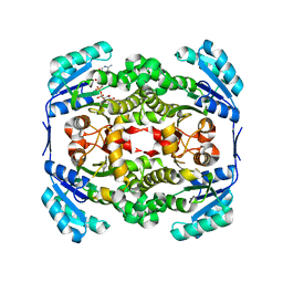 Molmil generated image of 2yw9