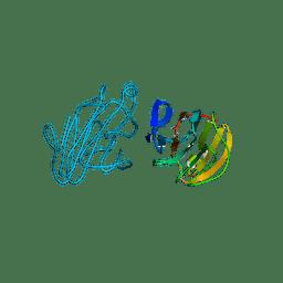 Molmil generated image of 2yyo