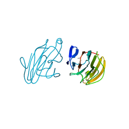 Molmil generated image of 2yyo