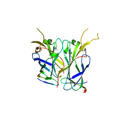 Molmil generated image of 2z34
