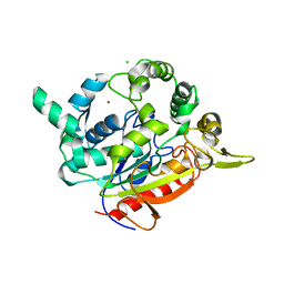 Molmil generated image of 2z5g