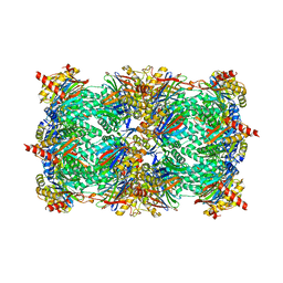 Molmil generated image of 2zcy