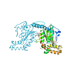 Molmil generated image of 2zsb