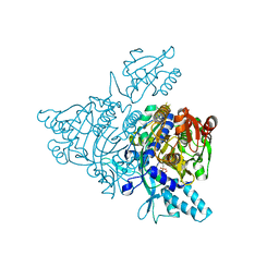 Molmil generated image of 2zt6