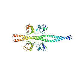 Molmil generated image of 2zvn