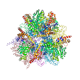 Molmil generated image of 2zy3
