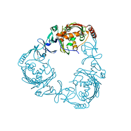 Molmil generated image of 2zyl