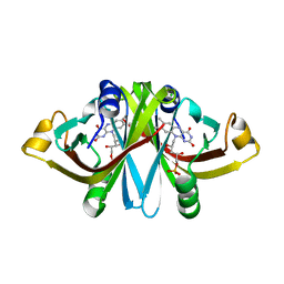 Molmil generated image of 3a6r