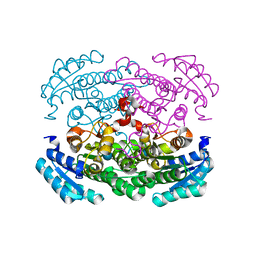 Molmil generated image of 3auu