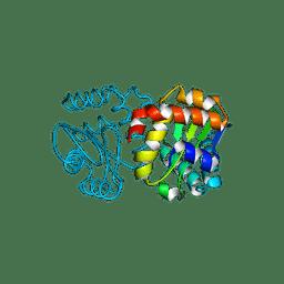 Molmil generated image of 3bjv
