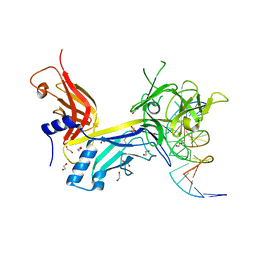 Molmil generated image of 3brg