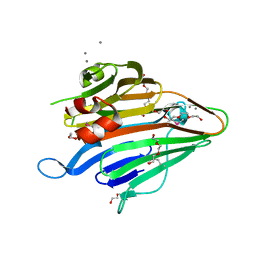 Molmil generated image of 3bs6