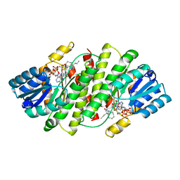 Molmil generated image of 3byz
