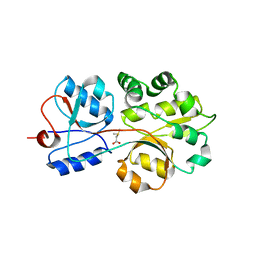 Molmil generated image of 3chg