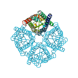 Molmil generated image of 3cn5