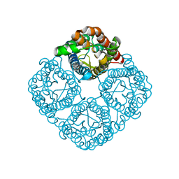 Molmil generated image of 3cn6