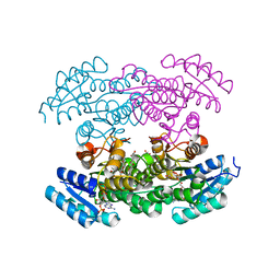 Molmil generated image of 3csd