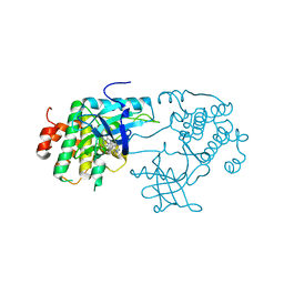 Molmil generated image of 3d94