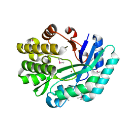 Molmil generated image of 3dcp