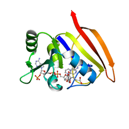 Molmil generated image of 3dfr