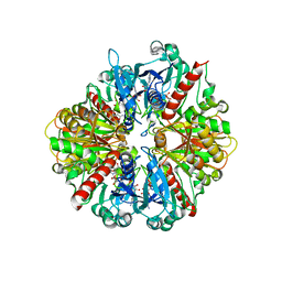 Molmil generated image of 3dmt